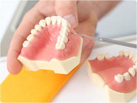 一番奥の歯をならべることができない
